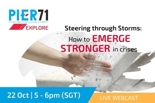 Steering through Storms: How to emerge stronger in crises